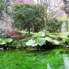 Gita ai Giardini di Ninfa